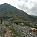 Las montañas de «Madonie» y sus pueblos