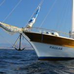 Pallas7-1024x696